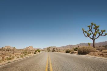 mojave desert via shutterstock