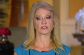 Kellyanne Conway (ABC News screen grab)