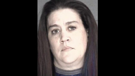 Renee Johnson-Fritz appears in a mugshot
