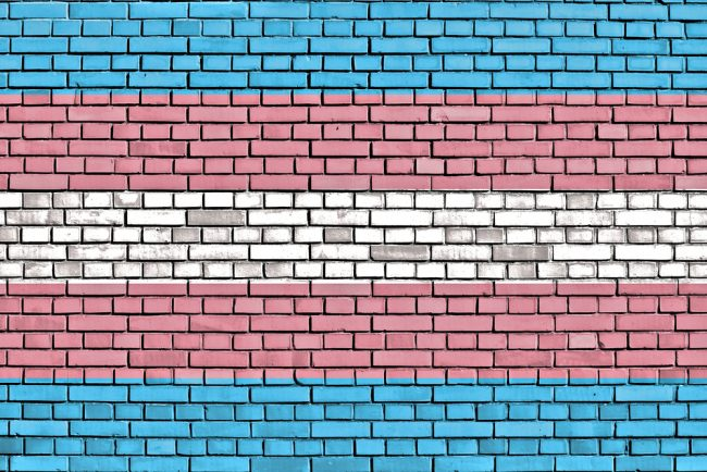 trans-pride-flag-wall
