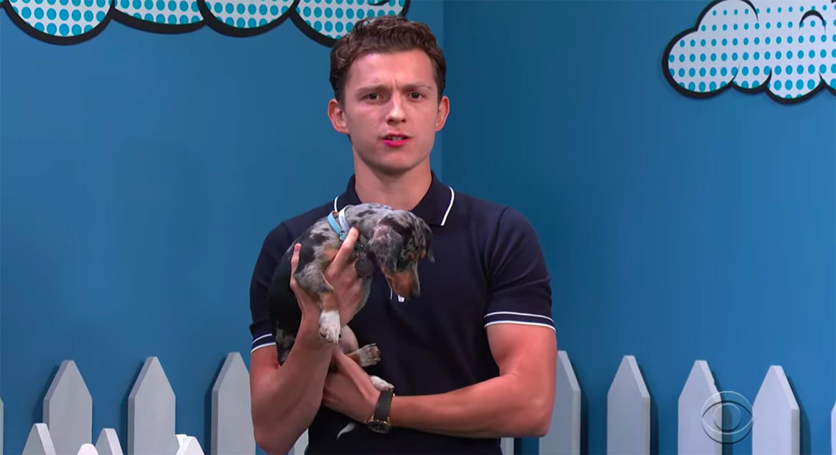 Tom Holland holding a puppy