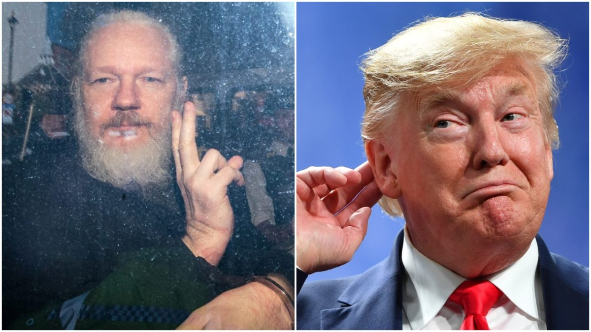 Julian assange and fonald trump, collage. Jack Taylor/Getty Images