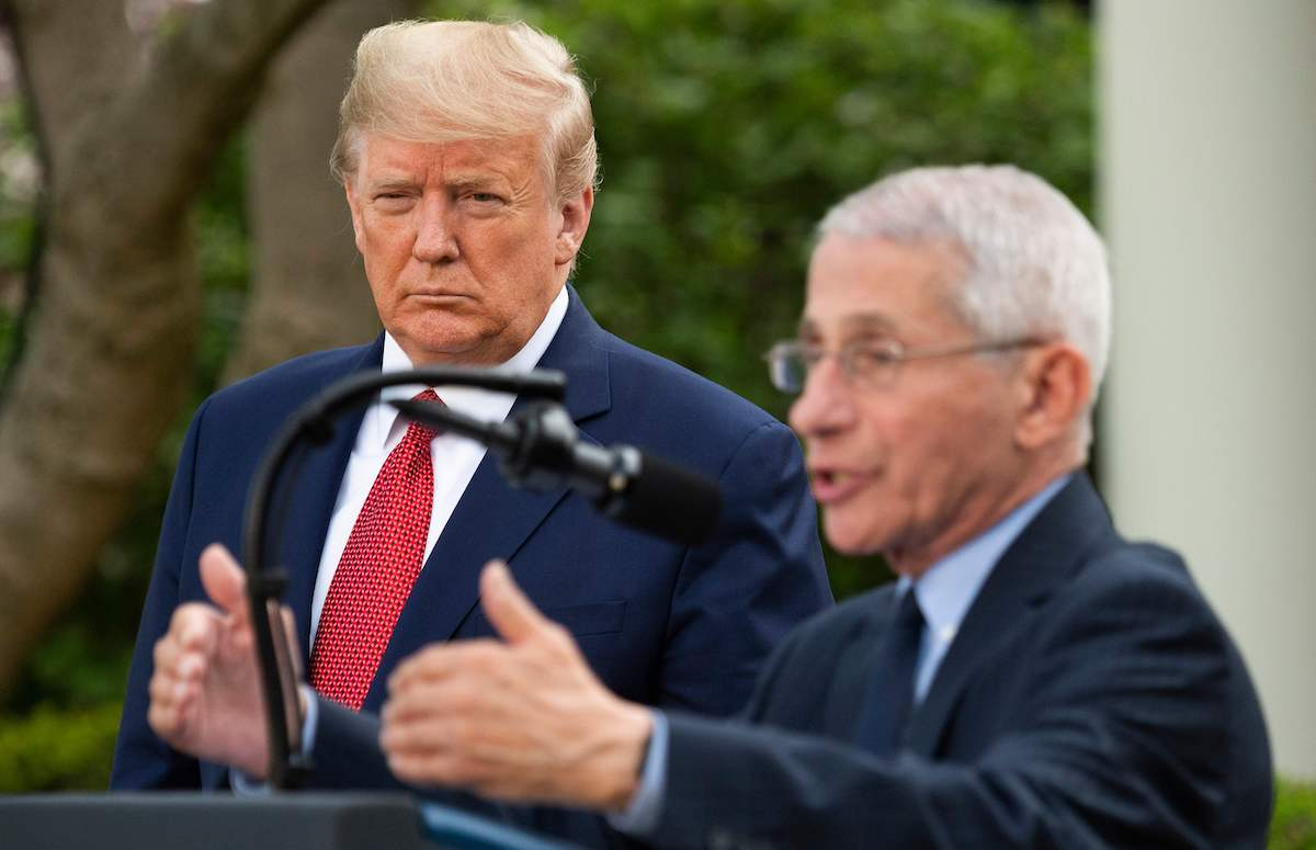 Donald Trump listens as Director of the National Institute of Allergy and Infectious Diseases Dr. Anthony Fauci speaks during a Coronavirus Task Force press briefing in the Rose Garden of the White House