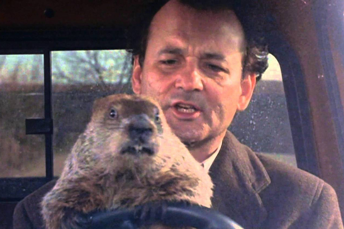 Bill Murray as Phil Conners