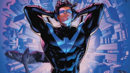 nightwing is sexy and he knows it